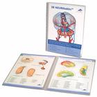 3B NEUROtables™ in German,S0090