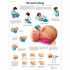Breastfeeding Chart, 4006706 [VR1557UU], Parenting Education