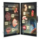 Consequences of Smoking, 3D Info Board, 1005580 [W43047], Tobacco Education