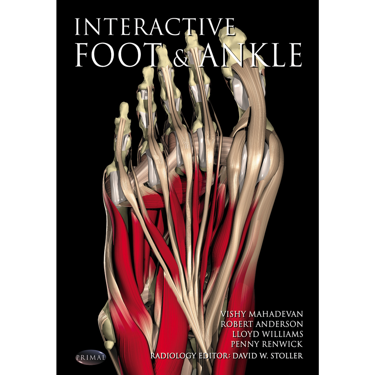 Primal Pictures Interactive Foot And Ankle English 1005845
