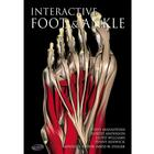 Primal Pictures - Interactive Foot and Ankle, English,W46613