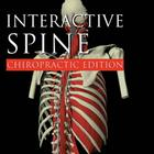 Primal Pictures - Interactive Spine: Chiropractic Edition, English,W46625
